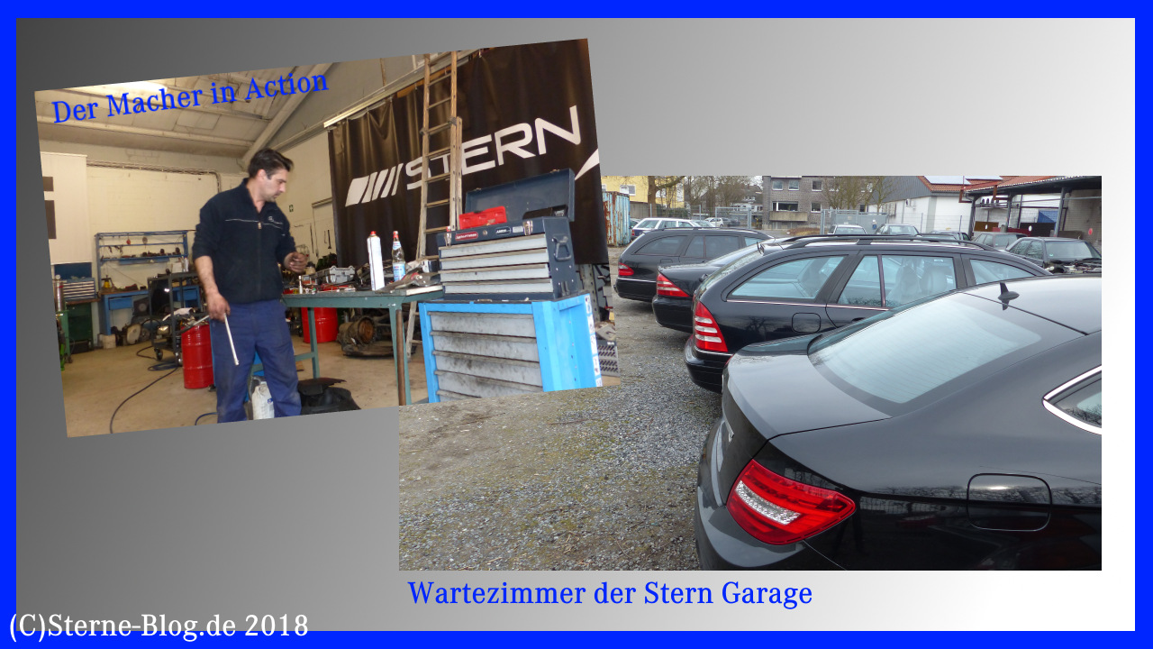 Stern Garage Datteln PS Profis